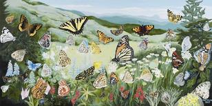 Deb van poolen butterflies